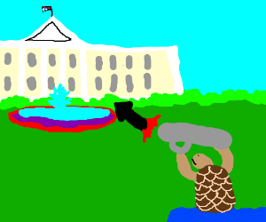 Turtle fires rocket at the white house