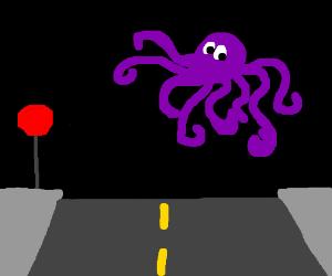 Octopus levitating