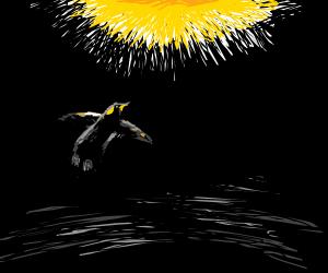 Black Penguin Soars to the Heavens