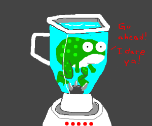 A frog dares you to turn on the blender.
