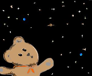teddybear sees the universe