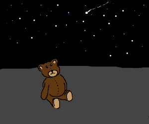 Teddy Bear looking up at the stars