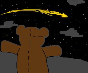 Teddy Bear stares into space