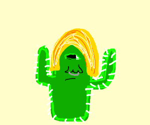 A Cyclop Cactus with a blond wig