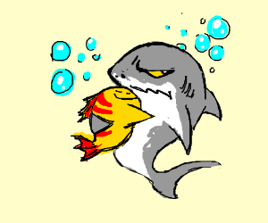 cuddlefish and his second cousin the shark
