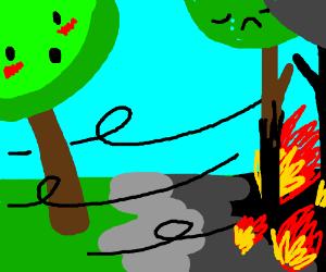Tree release wind of fire