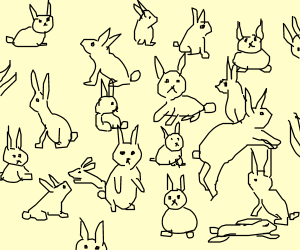 As many rabbits as you can draw in 10 minutes