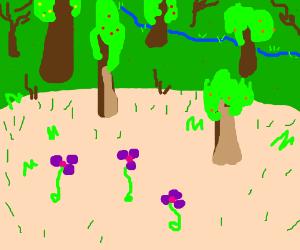 Purple flowers in pretty forest