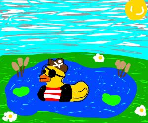 Duck Pirate