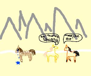 A shaggy horse