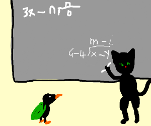 Advanced Calculus  with black cat and duck