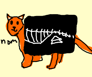 X-ray proves that the cat stole your sandwich