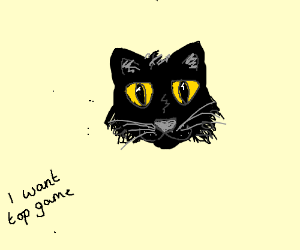 Black cat wants top game.