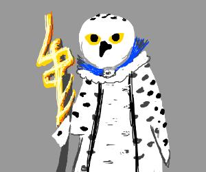 Lady owl priest