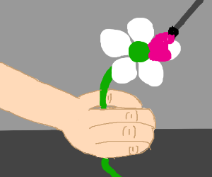 flower being painted