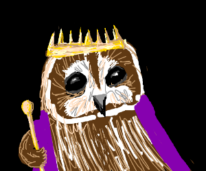 The owl is the king!