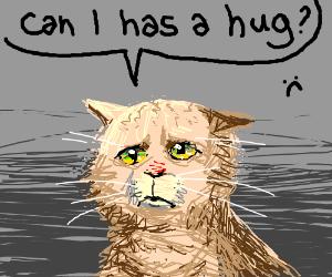 Sad cat wants a hug (awesome drawing!)