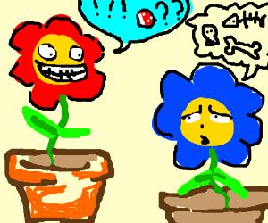 Red talking flower annoys blue talking flower.