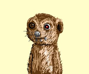Cyborg meerkat.