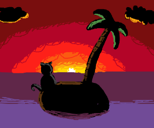 Lonely cat on an island watches the sunset.