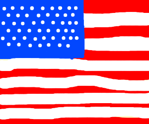 The 'Murican flag.