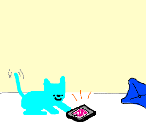 blue cat plays on its phone