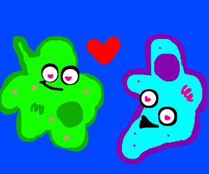 amoebas in love