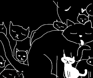 Lots of black cats and one white cat.