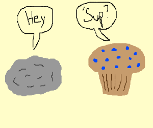 Rock and muffin greet each other