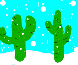 Two cacti in the snow