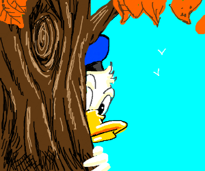 Donald duck hides behind a tree
