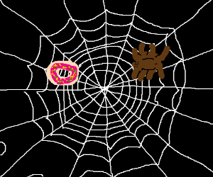 Spider catches pink frosted donut with sprinke