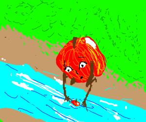 Fruit loses child in roaring river