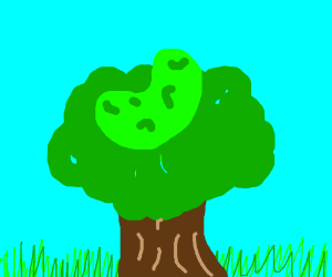 Pickle in a tree