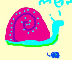 Gary meets a new snail friend