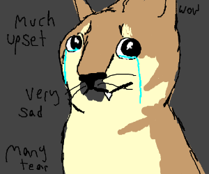 Much upset