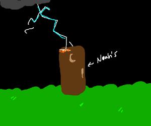 noah's outhouse gets struck by lightning