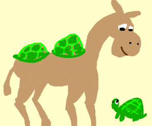 A camel states its a turtle