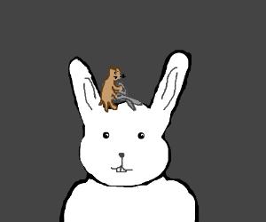 Bunny barber