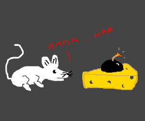 mouse not fooled by bomb cheese