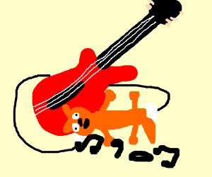 guitar playing cat