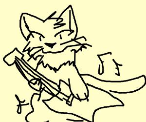 cat shredding the guitar
