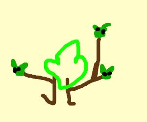Yodas family tree