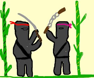 Two ninjas fight in bamboo grove.