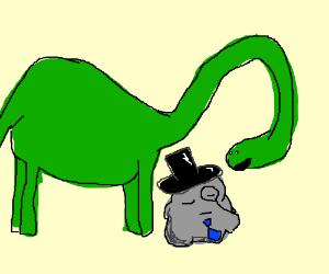 Dinosaur staring at a dapper rock