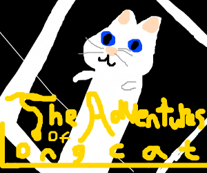 The adventures of Long cat