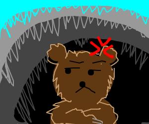 Annoyed brown bear