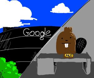 Google just a beaver
