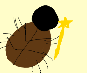 Wizard Cockroach