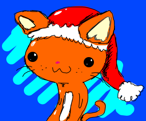 Cat with a Santa hat